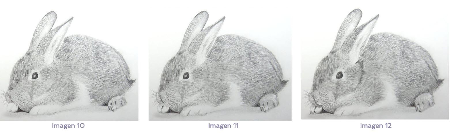 Cómo dibujar pelo de animal - ArteconAles